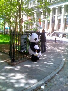 Panda Man takes a load off downtown